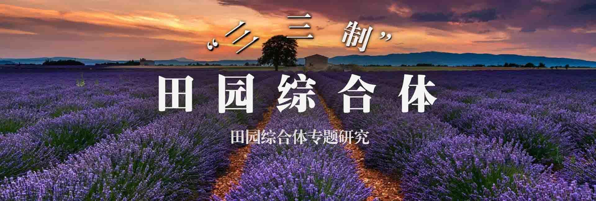 """""""三三制""""田园综合体"""